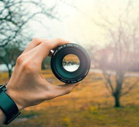 Becoming a wildlife photographer